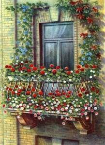 Какими растениями озеленить балкон