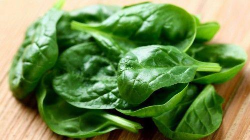 Шпинат полезные свойства, польза и вред, как кушать