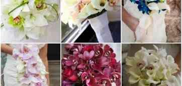 Фото:18. Отзывы:0. Товары:3. Магазин товаров Букет невесты Floweryworld.ru Букет из орхидей фаленопсис. Установите приложение «Свадебный помощник». Моя Свадьба в цифрах. Фирм — 47 481. Статей — 28 279.